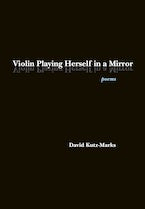 Violin Playing Herself in a Mirror