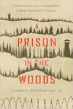 A Prison in the Woods